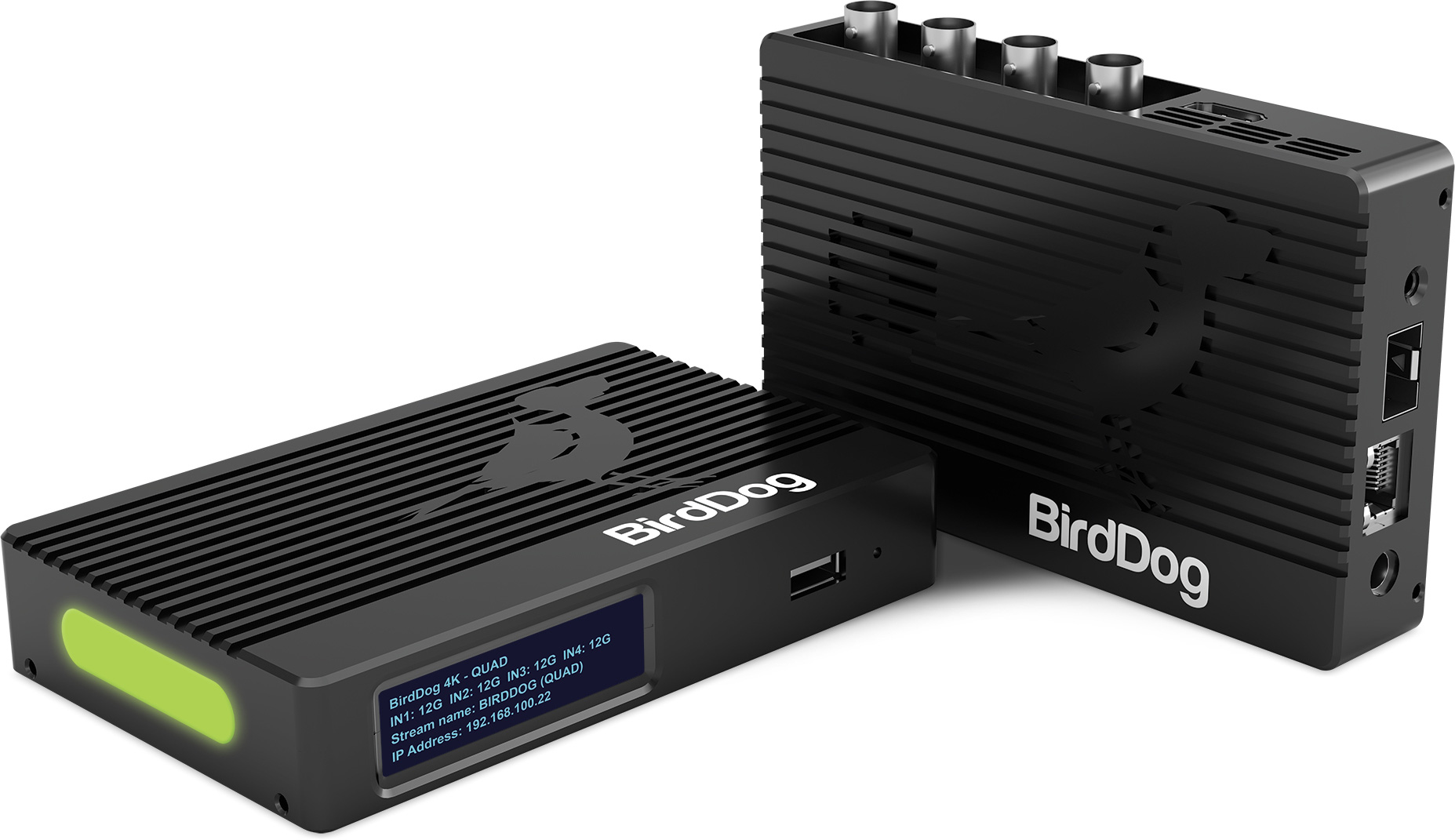 NDI: haciendo que el video IP sea una realidad con BirdDog