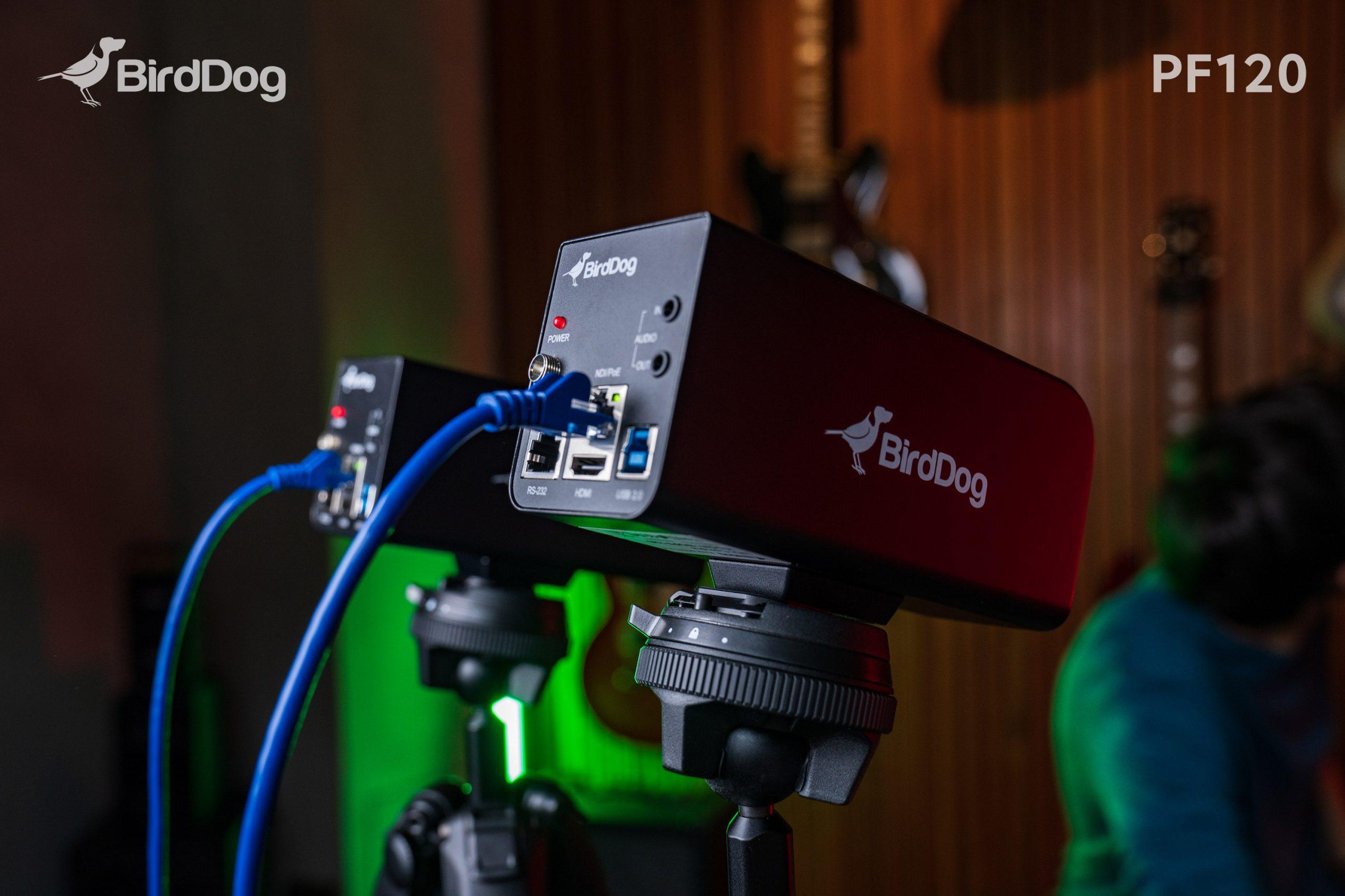 Nueva NDI® Box Cam de BirdDog: videocámara en red para organizaciones y escuelas